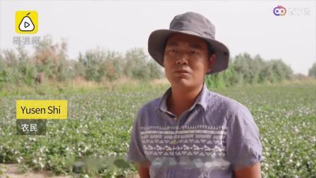 3000架无人机撒农药外媒:中国农民飞向未来