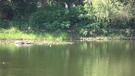 穿石坡湖(一)