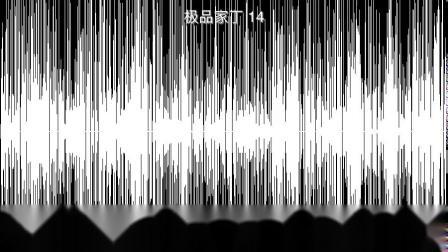 极品家丁 14