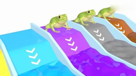 亲子早教动画 3D玩具青蛙入水池染色学习颜色