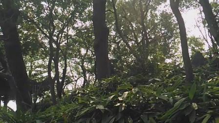 苏州沧浪亭景区2018年10
