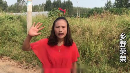 三农农村农业生活农民种植草莓致富