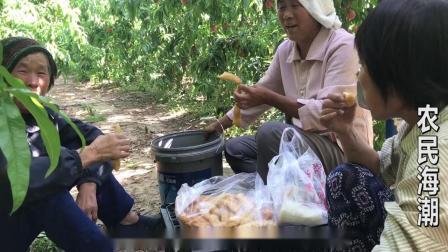 三农农村农民农业桃树桃园水果种植致富生活农民工