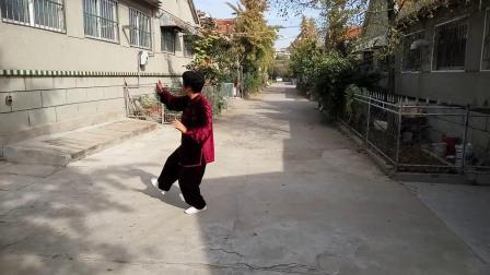 芹心杨式40式太极拳演练