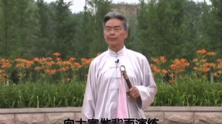 杨式太极刀52式教学8(背向演示)