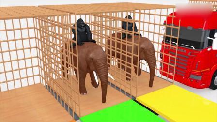 亲子早教动画 大象驮着黑猩猩过河吃水果 益智动画英语启蒙学颜色