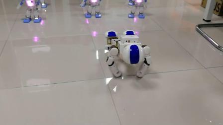 星道教育三好创智编程 机器人教学 青少年编程 少儿编程