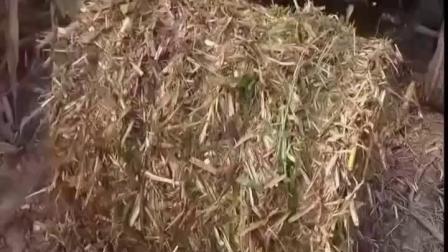 菏泽玉米秸秆粉碎打捆机秸秆揉搓回收打捆一体机生产厂调试视频