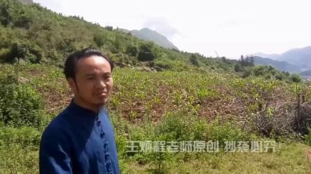 王炳程大师点评当地先生,不懂杨公风水乱寻龙点穴葬祖坟害人害己