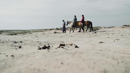 十载治沙,荒沙变绿洲