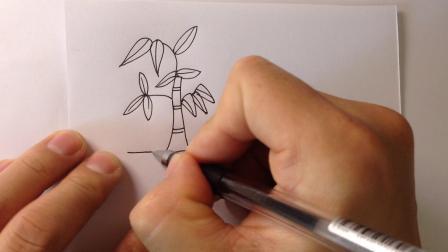 金龙手绘简笔画.竹子的画法2