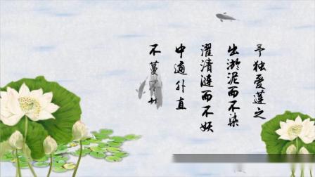 C935 AE模板 中国风 古诗朗诵 爱连说 荷花动态场景定制 视频制作