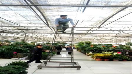VID20181026162238郑州陈寨花卉市场敬业的电工