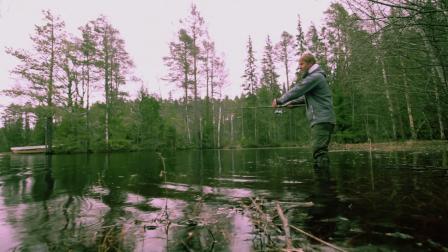 这才是钓鱼