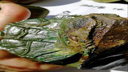 发现楔形文字出现在玉石表面   多伦彩玉原石籽料    新大陆VID_20181028_094851
