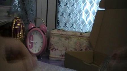 《无游不欢》荒野大镖客2 简单开箱