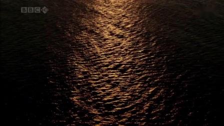 美妙的放松音乐 Wonderful Chill Out Music - 海洋  The Ocean_超清