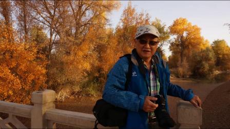 新疆之旅(二)轮台塔里木胡杨林风景区