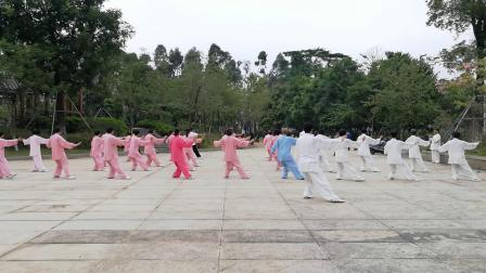 东莞凤山太极培训中心杨式85式太极拳习练