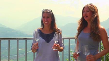 峻岭酒园灰皮诺白葡萄酒-Cliffhanger-Mezzacorona
