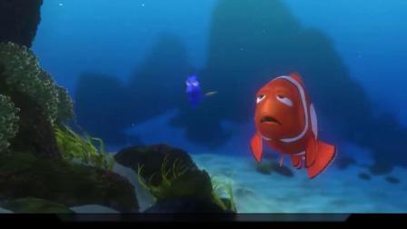 海底总动员,小鱼爸爸被鲨鱼抓走,参加奇怪派对
