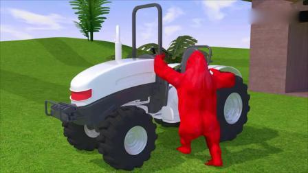 亲子早教动画 大猩猩开着不同颜色的卡车头拉着彩色水果