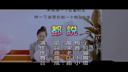 龍梅子–都說_(DJ版)_(1080P)_KTV