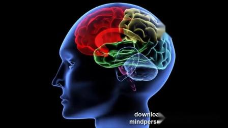 专用于集中精神工作、学习的阿尔法、西塔脑波音乐
