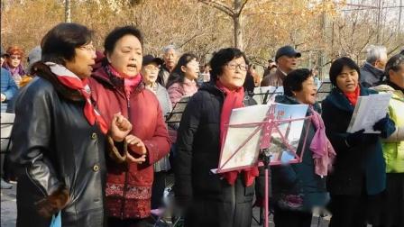 《又见山里红》指挥:周凤芝,快乐之声体育公园合唱团 2018.11.8。