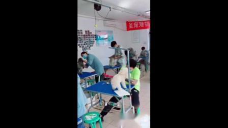 宠物美容培训学校|广州圣宠宠物美容学校