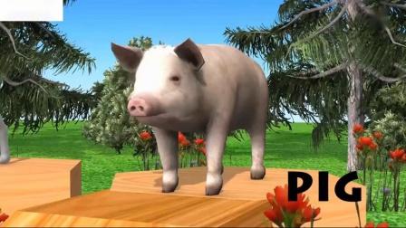 学前儿童学习颜色动物玩具动物栖息地儿童儿童视频