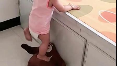 妈妈测试1岁宝宝智商,结局不服不行呀