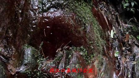 全球旅游攻略达人到多彩贵州来交换秋天,亚木沟原山原水摄人心魄