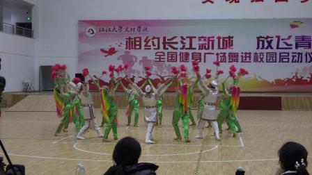 全国广场舞大赛总决赛获奖节目:塞上花儿情