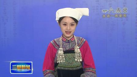 三都水族自治县水语一周要闻(11月11日)