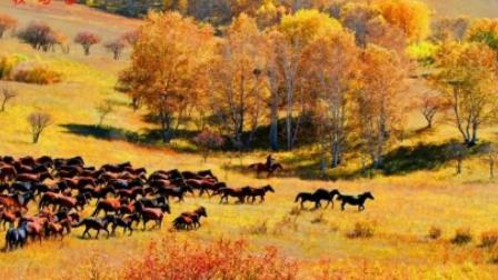 #幸福乐章#梦中的草原梦中的河。 。