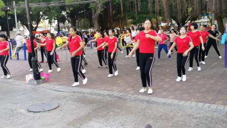 阿安广场舞  高州兰花之香舞蹈队 (动起来)