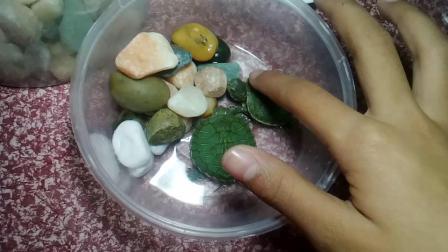 1.介绍小乌龟😊