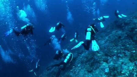 大潜水事业