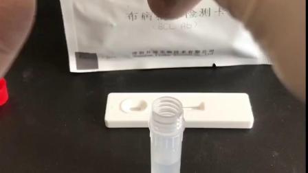 布病检测视频