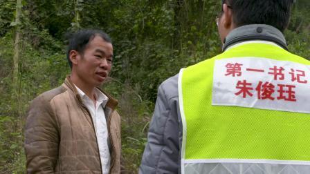 产业脱贫,畜牧先行---广西柳州市柳江区养殖产业扶贫纪实