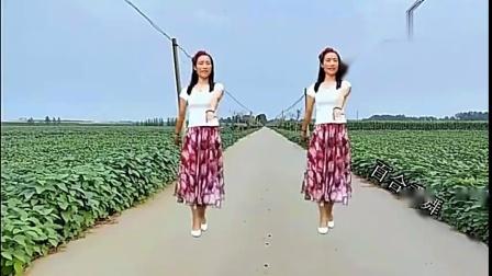 广场舞《青青河边草》动感节奏,欢快舞步,潇洒大气,简单好学