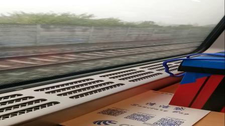 [车厢视角]D2224成都东到杭州东大地铁出汉宜线荆州站5站台