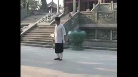 武当龙化剑