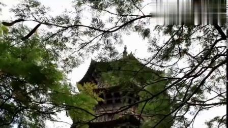 游泉州:千年古刹大开元寺