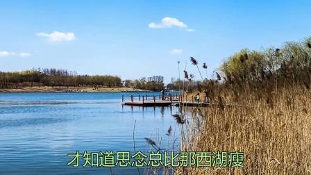 童丽一首《烟花三月下扬州》被奉为经典中的经典