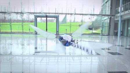 机器蜻蜓 - 蜻蜓无人机