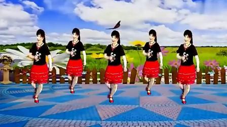 广场舞《在希望的田野上》经典老歌新跳法,舞步潇洒大气,好看