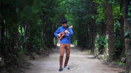 Country Road-ukulele独奏