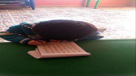 吴雨轩小朋友一年级上册写字表听写100字。